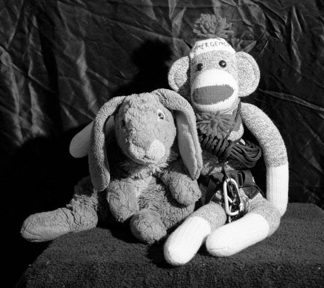 Black & white portriat of Zeus and Emergency Monkey.