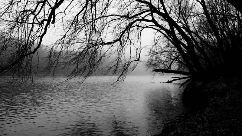 Potomac River in the fog.